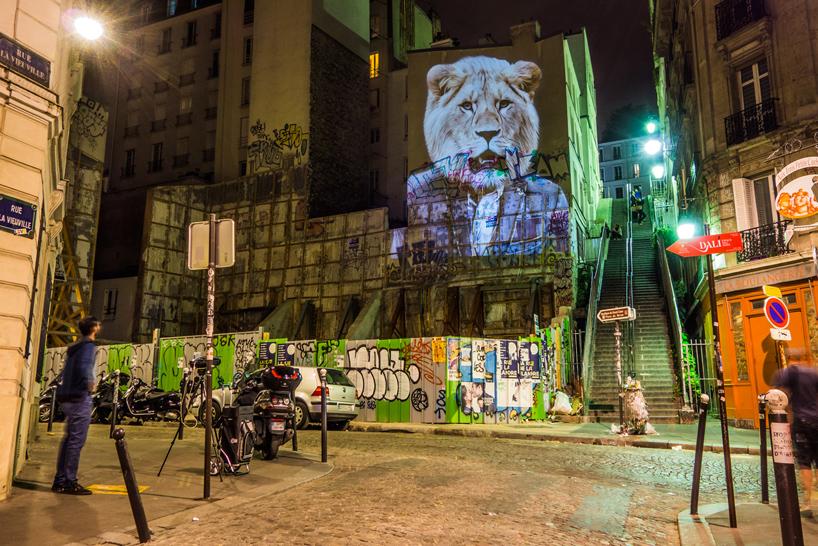 julien-nonnon-urban-safari-hipster-animals-paris-designboom-02