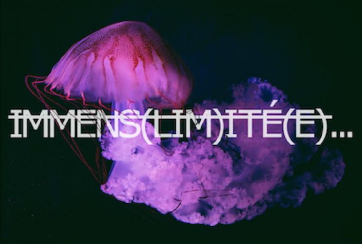 Immens(lim)ité – Rero investit l'Aquarium de Paris