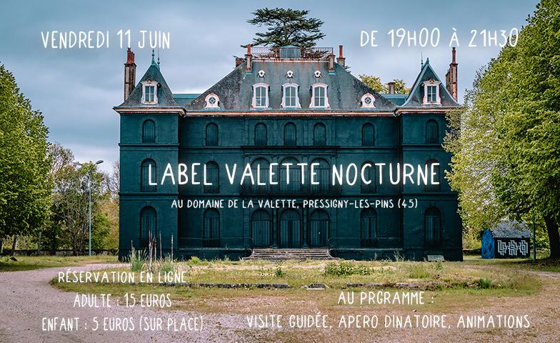 Nocturne et inauguration de l'oeuvre d'Astro sur le château de la Valette